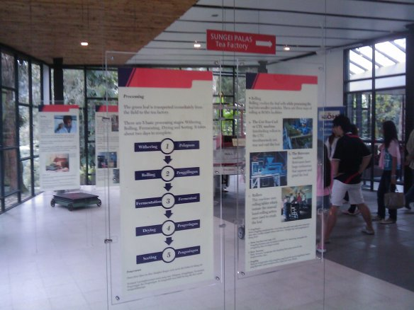 Exhibits on the history of BOH